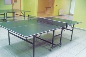 masa tenisi, ayaklı masa tenisi masası, masa tenisi masası, tenis masası, ev tipi masa tenisi,